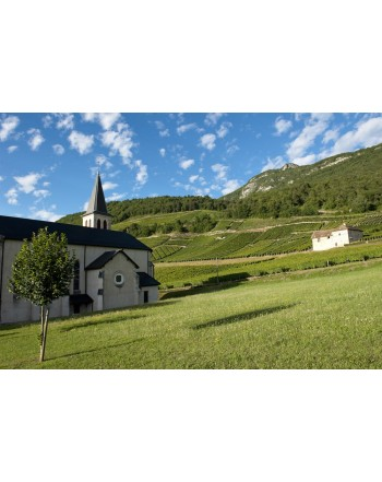 """TERRE NATALE"" Roussette de Savoie cru Marestel"