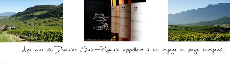 Vin de Savoie du Domaine Saint-Romain